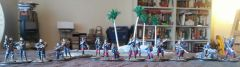 Another View of my French Troops